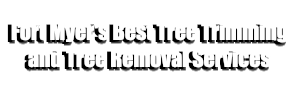 1-Fort Myers Best Tree Trimming and Tree Removal Services-We Offer Tree Trimming Services, Tree Removal, Tree Pruning, Tree Cutting, Residential and Commercial Tree Trimming Services, Storm Damage, Emergency Tree Removal, Land Clearing, Tree Companies, Tree Care Service, Stump Grinding, and we're the Best Tree Trimming Company Near You Guaranteed!