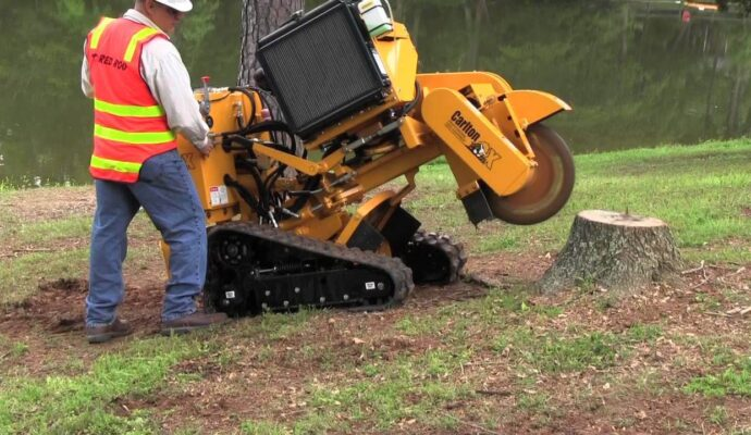 Fort Myers Best Tree Trimming and Tree Removal Services-Stump Grinding-We Offer Tree Trimming Services, Tree Removal, Tree Pruning, Tree Cutting, Residential and Commercial Tree Trimming Services, Storm Damage, Emergency Tree Removal, Land Clearing, Tree Companies, Tree Care Service, Stump Grinding, and we're the Best Tree Trimming Company Near You Guaranteed!